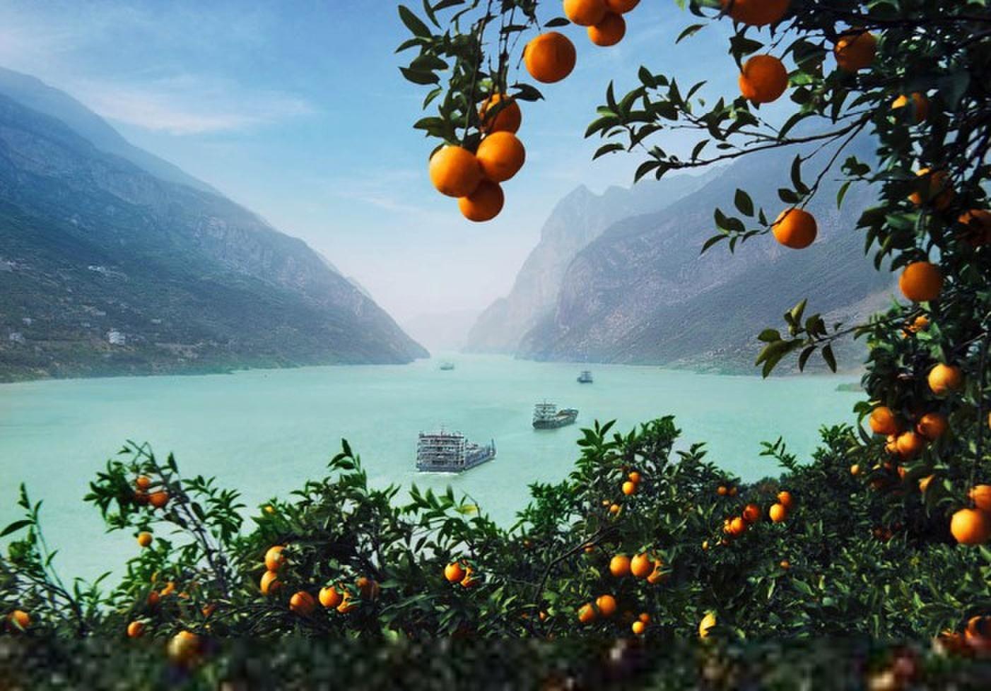 【尊享游船】宜昌万州重庆豪华游船单船单卧五日游